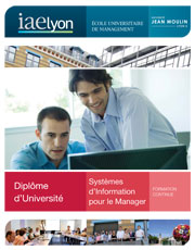 Formation SI gestion