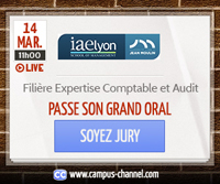 expertise-comptable et l'audit